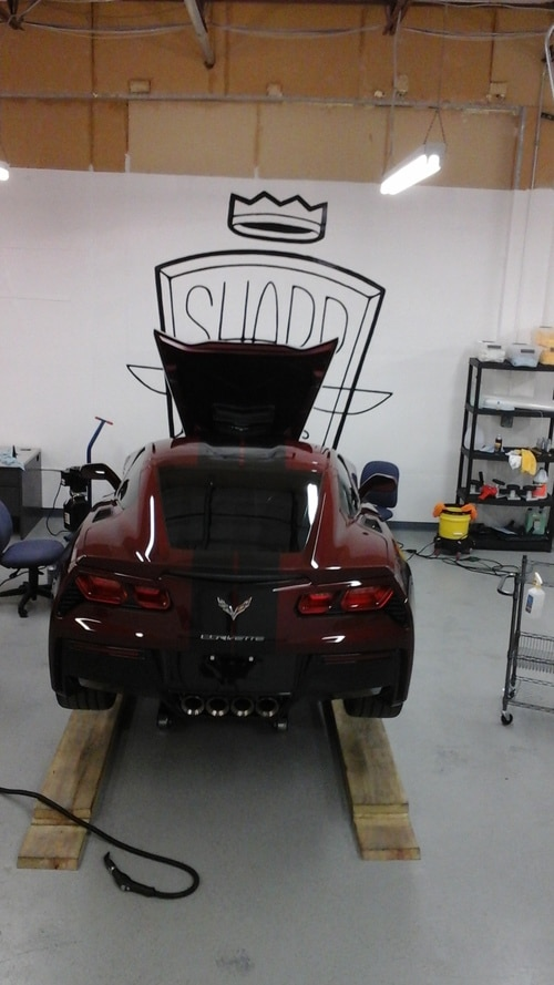 Paint Protection in DFW
